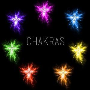 cisne_siete-chakras5
