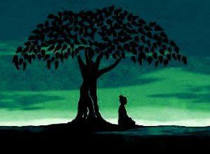 meditacion12