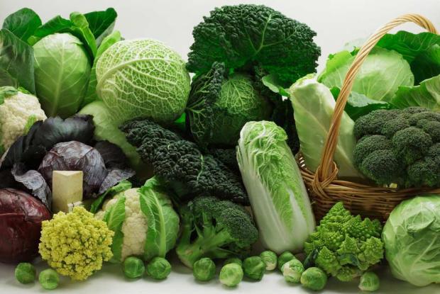 verduras_hoja_verde1
